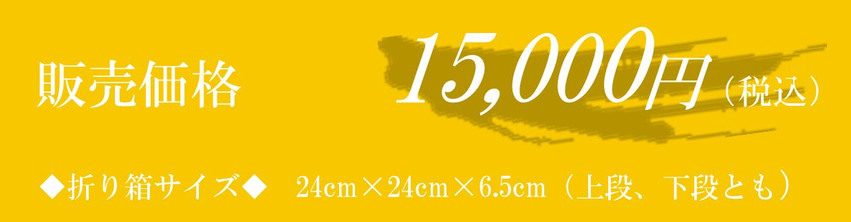 販売価格13,888円(税込15,000円)