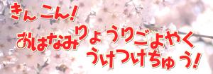 201604お花見バナー